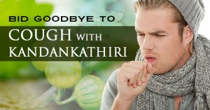 Bid GoodBye to Cough with Kandankathiri