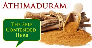 athimaduram-the-self-contended-herb