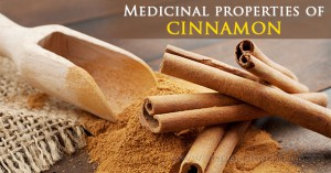 medicinal-properties-of-cinnamon