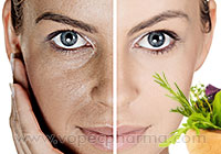 Ayurveda for Dry Skin Allergies