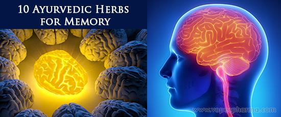 Ayurvedic Herbs for Memory