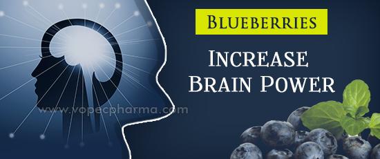 Blueberries Increase Brain Power