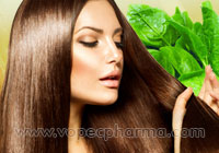 Spinach Miracle for Hair Growth