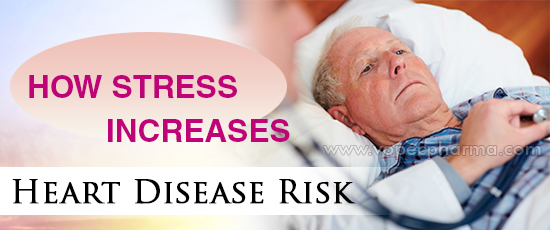 How Stress Increases Heart Disease Risk?