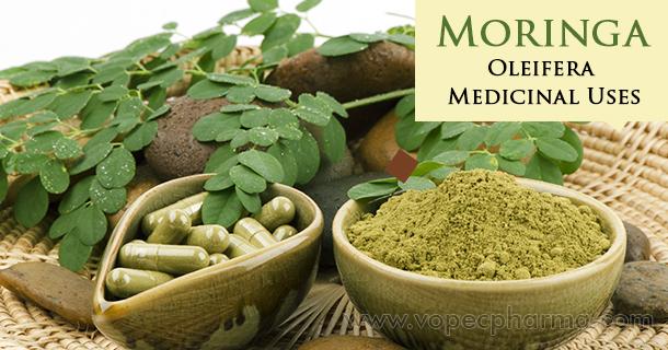 Moringa oleifera medicinal uses