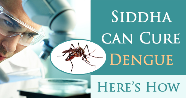 dengue attack