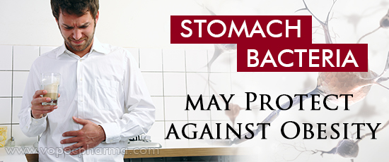 Stomach Bacteria may Protect against Obesity