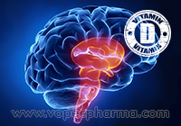 Vitamin D Causes Brain Damage